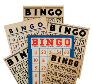 bingobrickor